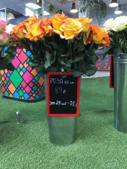 Роза Жёлтая до 25 шт Эквадор